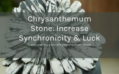 Chrysanthemum Stone: Increase Synchronicity & Luck